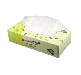 Facial Tissues - Flat Box - TREE FRIENDLY Facial Tissues TREE FRIENDLY Dante Disposables
