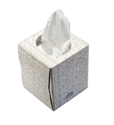Facial Tissues - Boutique Box Facial Tissues Dante Disposables